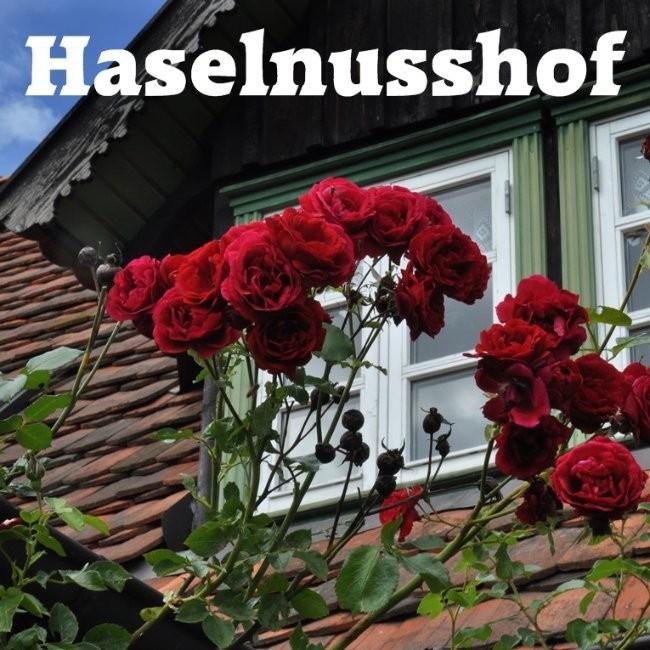 Haselnusshof