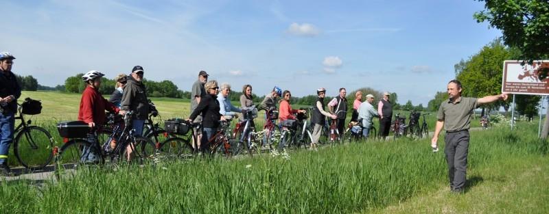 Geführte Radtour in´s Grüne Band